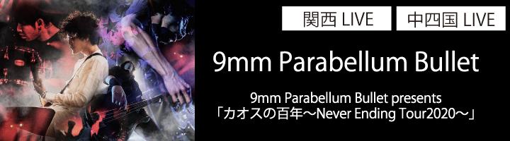 9mm-Parabellum-Bullet-サブクローズアップ
